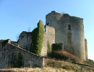 Château fort de Montaigu-le-Blin