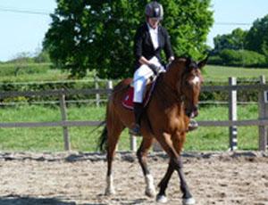 Equitation Ecurie des Tenons