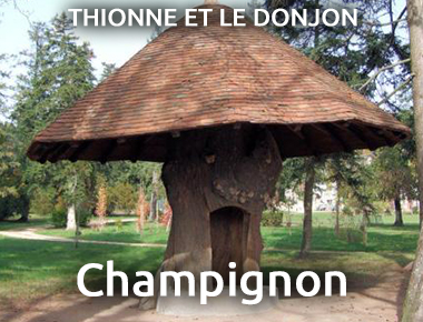 Champigon