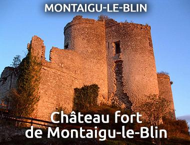 Château fort - Montaigu-le-Blin